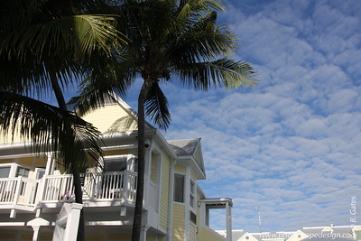 View from the Pool Area at Southernmost on the Beach  [D]