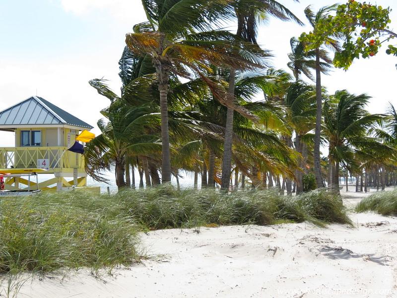 Crandon Park Beach, Key Biscayne