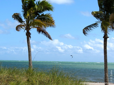 Crandon Park Beach, Key Biscayne