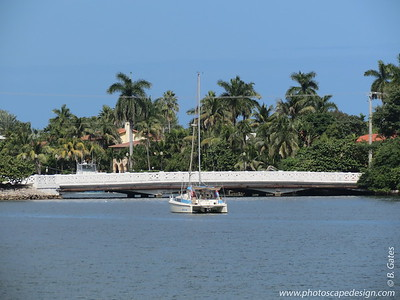 Bridge connecting Palm and Hibiscus Islands