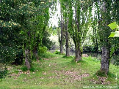 Kathryn Albertson Park - Boise, Idaho