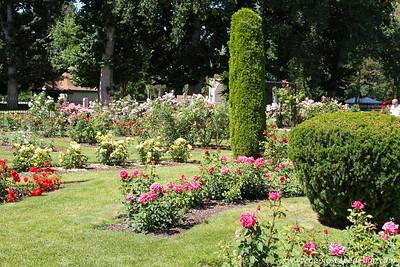 Municipal Rose Garden - Julia Davis Park - Boise
