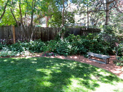 Escape the desert by entering a woodland garden.  Behold the conifers, hydrangeas, rhododendrons, hostas, grasses, a soaring cedar, and 20 unique Japanese Maples.  This private garden is enjoyed from a tranquil deck.