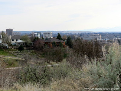 View of downtown Boise