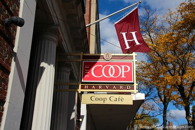 The COOP in Harvard Square
