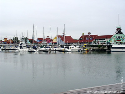Marina - Long Beach, California