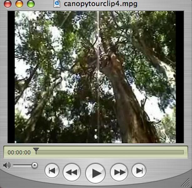 Canopy Adventure - Puerto Vallarta, Mexico (March 2005)