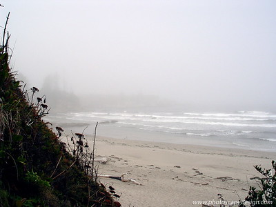 Shore Acres State Park, Oregon (2005)