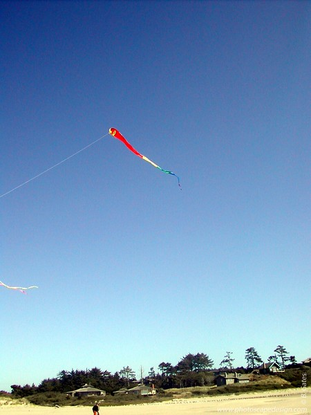 Flying Kites - Bandon, Oregon (2003)