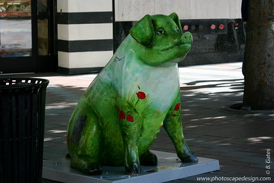 Pigs on Parade - Seattle 2007