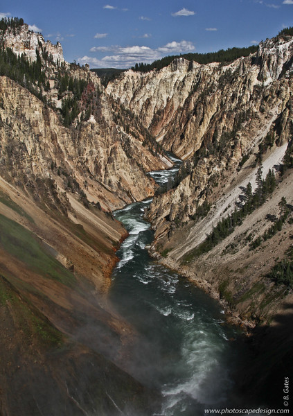 Yellowstone Canyon from Lower Fall's Brink, Yellowstone National Park, Wyoming
