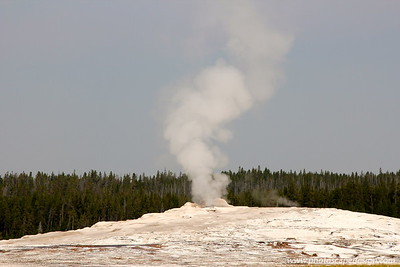 Old Faithful was named by the first official expedition to Yellowstone, the Washburn Expedition of 1870. They were impressed by its size and frequency. Old Faithful erupts every 35 to 120 minutes for 1 1/2 to 5 minutes. Its maximum height ranges from 90 to 184 feet.