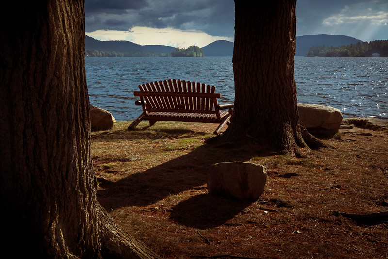 Have you ever stood between two trees and listened to the breeze?