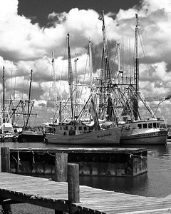 IMG_0780 Back Bay Shrimp Boats