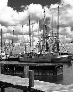 IMG_0780 Back Bay Shrimp Boats