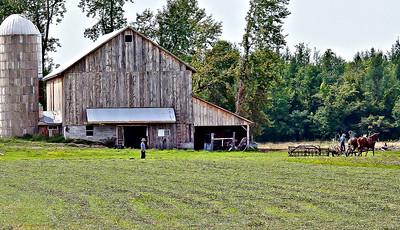 Amish Farm in Upstate NY