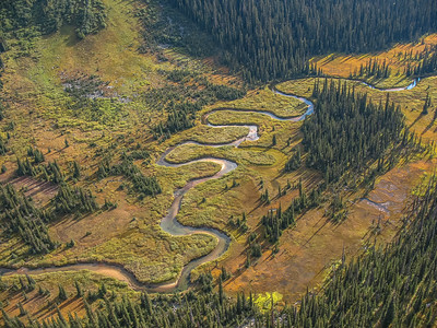 Whirlpool River runs through the pass down to the Athabasca River.