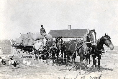 """John W. Janssen with Load of Wool Approximately 60 miles south of Miles City, Montana 1911   The first post office in the area was established at the Bob Kingsley place on SL Creek, but had been abandoned. Although the dates are uncertain, it may have been in operation from 1902-07. To obtain their mail, people had to ride to Miles City, Beebe or Stacey, asking if there might be mail for them.  There had formerly been a store and road ranch at the Silas """"Si"""" Hughes place, but it went broke. According to an entry in """"Echoing Footsteps,"""" it was noted that Mrs. Hughes """"fed too many free lodgers.""""  In their accounts of homesteading in Montana, Ruth (WARKINS) Kiser and Norman R. Warkins both mention living in an old store building in the spring of 1913. Their sister Hallie (WARKINS) Janssen also mentions the old Hughes Store:  """"We pitched a large tent close to where out new house was to be built. It started to rain and the tent stakes kept pulling out of the ground, so we moved into a neighbor's (Mr. Hughes') old store building until we could move into our own home."""" This wouldn't be the last time that Hallie made her home in an old store building."""