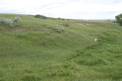 The dugout / sod house was to the left of the stake.