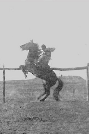 Show Off: 1911   As a teenager, Granddad taught this horse to rear. He gave instructions to his buddy, Mac, who owned a camera, to be ready to catch the action.   If he had had wheels, he would have been popping wheelies. Alas, they weren't readily available at the time.