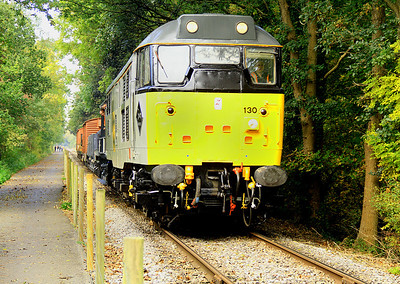 31130 in a sylvan seting on the southern section of the line with a demonstration goods.  21/10/12.