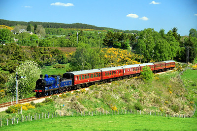 Caledonian Railway 0-6-0 number 828 heads towards Boat of Garten with the 11:30 from Broomhill.  26/05/12.