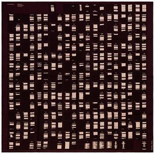 Fragments d'un discours amoureux (Roland Barthes) - CS140 - Dark purple - NWCTS - 1608231518