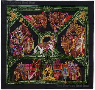 Danse du Cheval Marwari - black - MCWOCT 1407182310