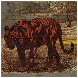 Tigre du Bengale - Kaki Fauve Chocolat - NWSTS - 1703011837