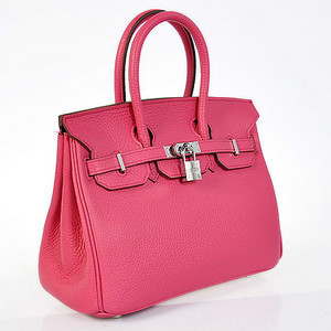 Birkins 25 hot pink silver hardware 25 x 20 x 13 cm