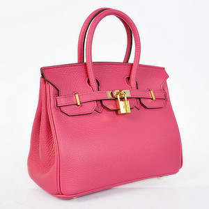 Birkins 25 hot pink Gold hardware 25 x 20 x 13 cm