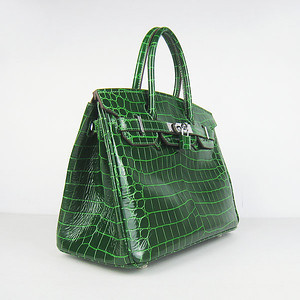birkins 30 green croc silver hardware