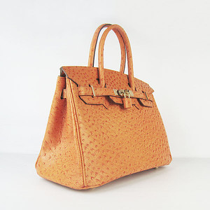 Birkins 30 Ostrich Veins Orange Gold hardware