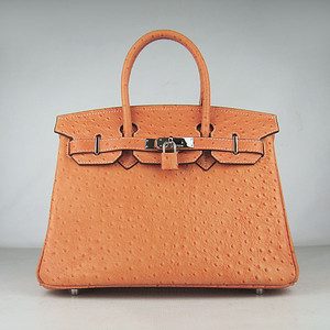Birkins 30 Ostrich Veins Orange silver hardware