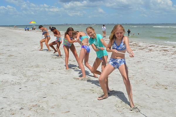 Hermit Crab Crawl-down Week 2016