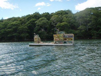 Lobster Traps barge