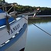 Hermit Island Yankee