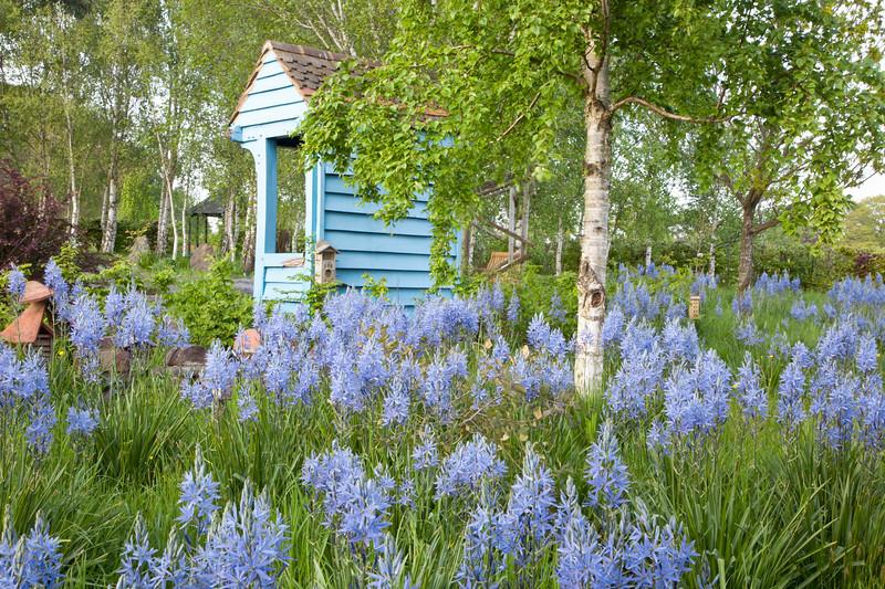 Sussex East - Merriments Gardens
