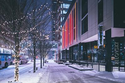 Nicollet Mall Winter Trees