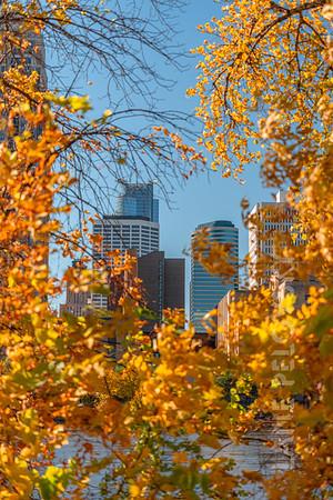 Northeast Minneapolis Fall
