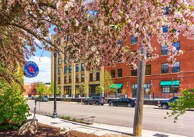Minneapolis Spring