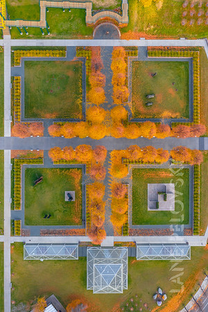 Minneapolis Sculpture Garden in the Fall: Treeline