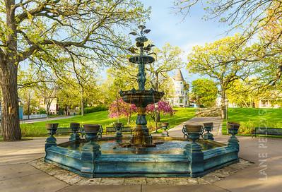Irvine Park - Fountain