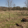 P. cinereus habitat from Chinook Wildlife Area in Clay Co., IN