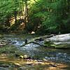 Hellbender habitat: Davidson River, Transylvania Co, NC