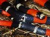 EI Colubroidea Elapidae Elapinae<br /> Micrurus lemniscatus<br /> Ribbon Coral Snake<br /> Madre Selva<br /> 2014