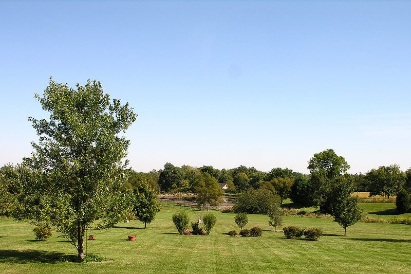 Taken at the home of Darla's uncle Bud and aunt Roberta near Plainfield Indiana