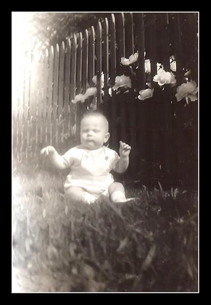 Herbert Leo baby
