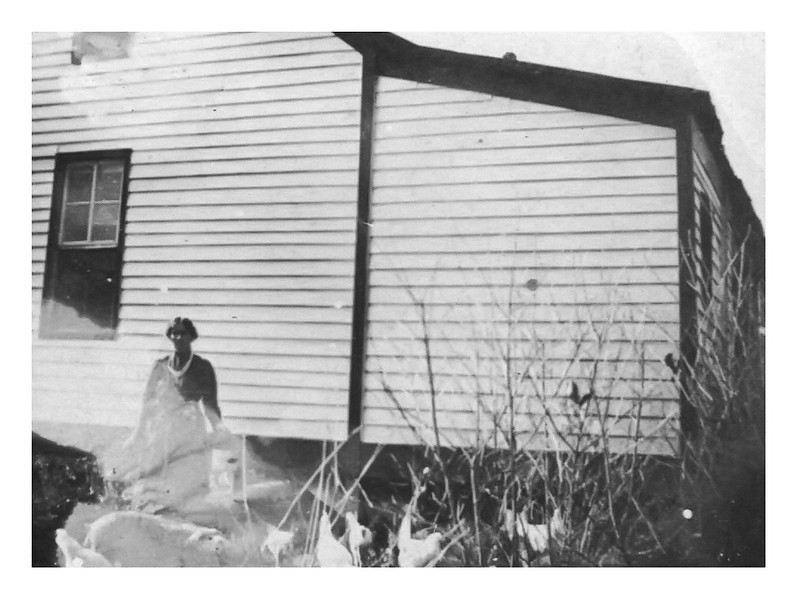 Nora Carter feeding fowls on Carter place - Nov 1919 - Tompkinsville Ky