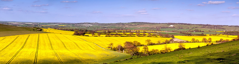 A panorame view of the Hertfordshire and Bedfordshire countryside in spring